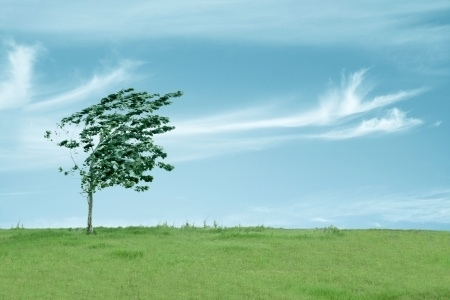 ▽▲向かい風とのつきあい方▲▽